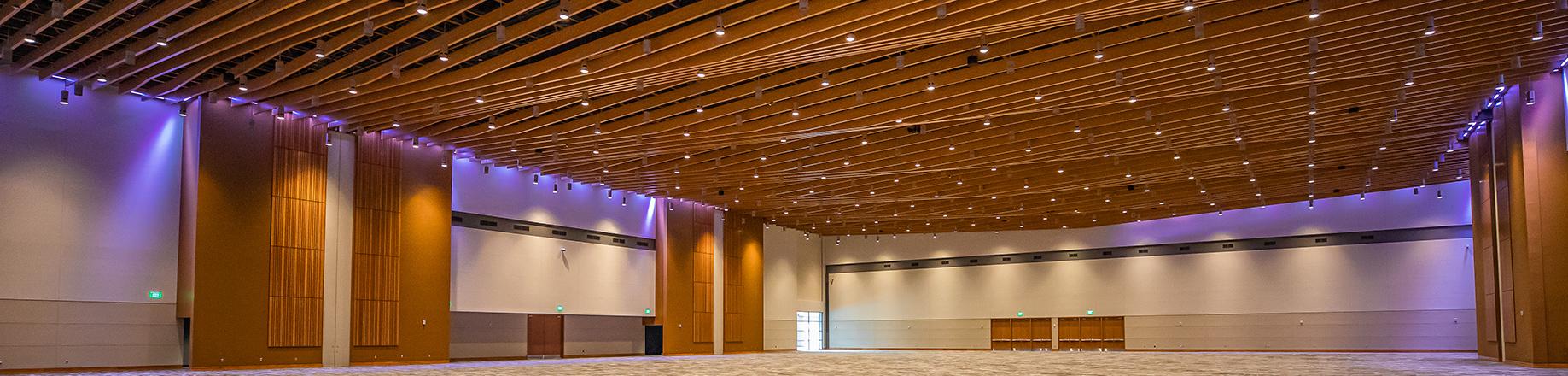cl-specialty-ceilings-header-1